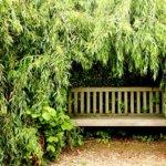 Räume im Garten schaffen gartengestaltung ideen bilder sitzecke 2