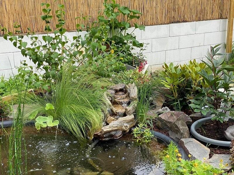 Schönste Gärten - Moni