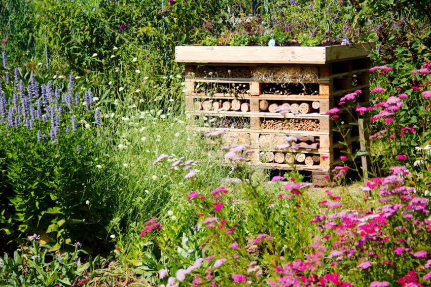 Gartenblog Insektenhotel Garten günstig gestalten
