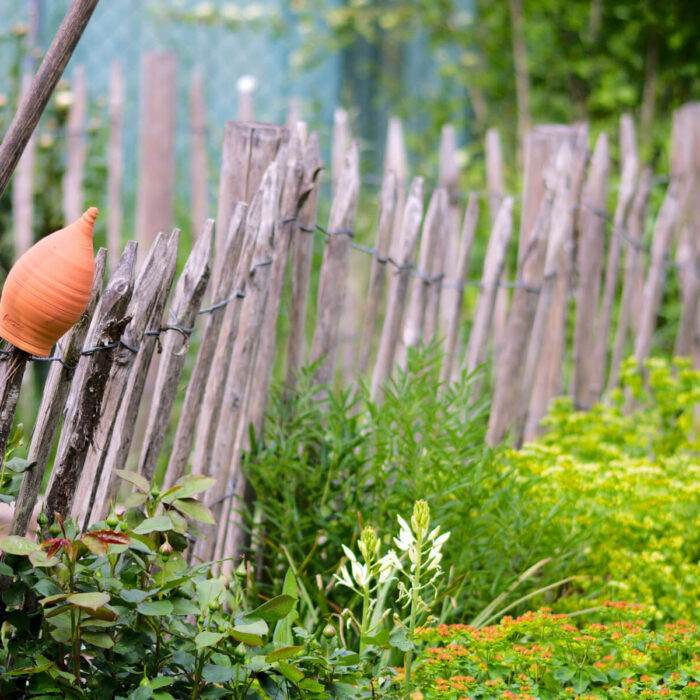 Gartenblog Gartengestaltung