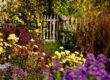 Einen bunten Garten im Herbst